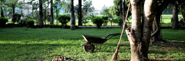 Entretenir facilement son jardin en 5 étapes