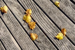 Feuilles mortes jaunes sur une terrasse en bois
